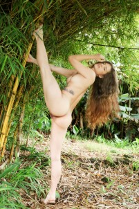 Cutie poses totally naked in bamboo forest