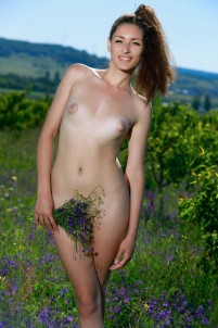 Cutie gets orgasms in field flowers